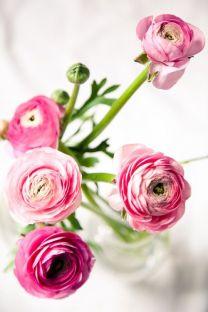 I love flowers!!!