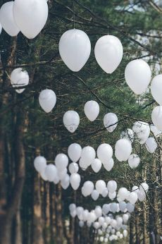 Ballons in Trees