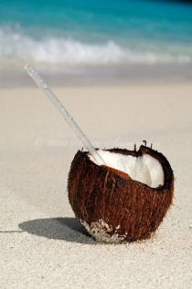 Coconut in the Sand